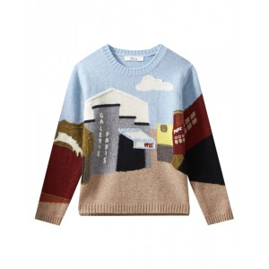 Boys embroidered sweater