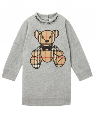 Thomas bear sweater dress